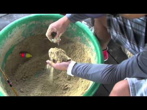 How To Make Bait For Mekong Giant Catfish