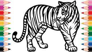 How to Draw Tiger Coloring Pages for Kids Drawing and Learn Colors for Kid Toddlers