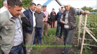 Министерство аграрных политик Приднестровья заинтересовалось проблемой ореховодства часть 1