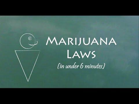 Understand Marijuana Laws In 6 Minutes