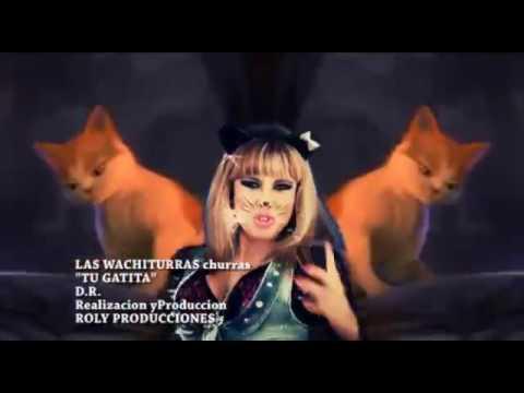 video de las wachiturras tu gatita