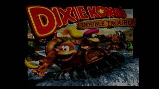 Donkey Kong Country 3 Any% in 48:26