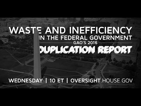 Waste and Inefficiency in the Federal Government: GAO