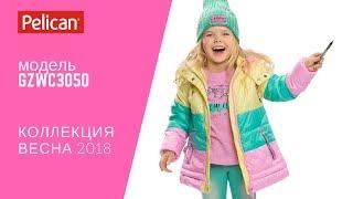 Обзор куртки для девочки Pelican модель GZWC3050 Коллекция Весна 2018 (Одежда Pelican Пеликан) Lenvi