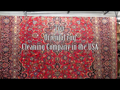 Cleaning Expansive Silk Carpet from dog cat urine odor-By PetPeePee