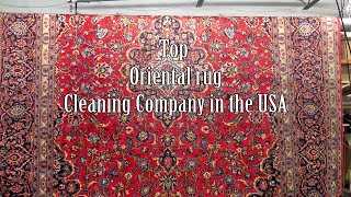 Cleaning Expensive Silk Carpet from dog cat urine odor-#PetPeePee