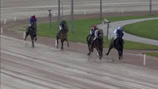 Vidéo de la course PMU PRIX TRADERS
