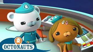 Octonauts - Protect The Habitats | Cartoons for Kids | Underwater Sea Education