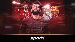 Salah auf dem Sprung? Das sagt Klopp | SPORT1 - Transfermarkt