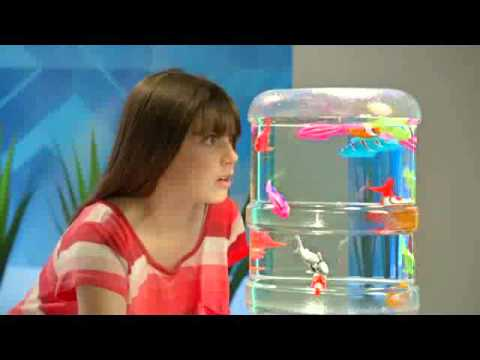 Robo Fish Now Available At Toys R Us Youtube