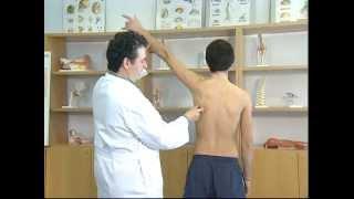 Exploración del hombro.  Dr Javier de Toro CHUAC INIBIC UDC...