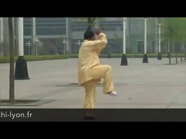 Zhang Qi Lin - Tai Chi style Chen Xinjia Yilu [陈氏太极拳新架 Taijiquan style Chen]