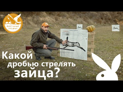 Какой дробью стрелять зайца? (Охотничий дневник #1)