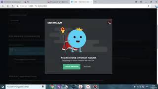 Как создать качественный сервер Discord Все фишки и установление ботов