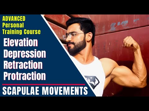 SCAPULAE MOVEMENTS || elevation || depression ...