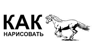 Рисунки лошадей. KАК карандашом НАРИСОВАТЬ ЛОШАДЬ(Как нарисовать лошадь поэтапно карандашом для начинающих за короткий промежуток времени. http://youtu.be/85tKLaaozkQ..., 2015-06-22T09:02:57.000Z)