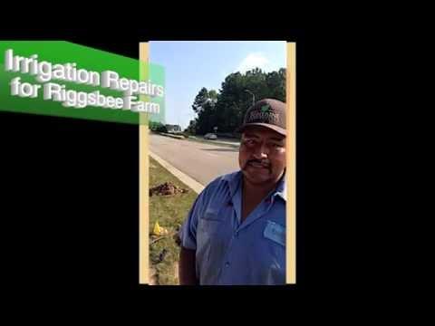 Crew Cuts - Jose @ Riggsbee Farm in Cary, NC