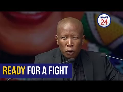 AfriForum targets Julius Malema on charges of fraud and corruption