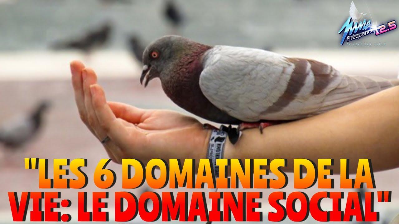 """""""LES 6 DOMAINES DE LA VIE: LE DOMAINE SOCIAL"""""""