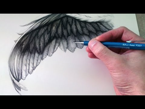 How to Draw a Wing