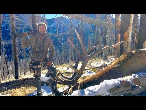 AMAZING Idaho Elk Hunt - Limitless 39