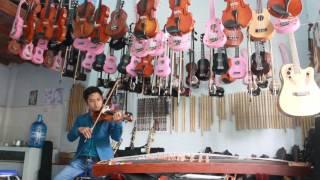 violon cao cấp không bao giờ bó tay