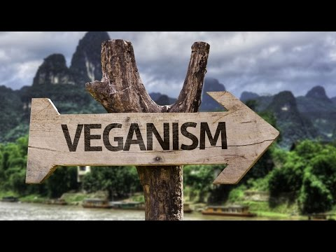 The Reason for Vegan | Real Food for Thought