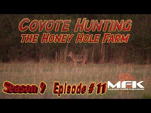 Coyote Hunt at the Honey Hole Farm S9:E11