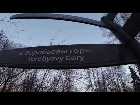 Как добраться до воробьевых гор на метро