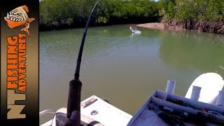 Chasing Barra in the Carrington - NT Fishing Adventures
