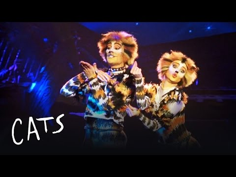 Mungojerrie and Rumpelteazer | Cats the Musical