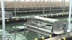 Agrodynamic initie le développement d'une filière spiruline en Eure-et-Loir (28)
