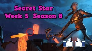 Secret Star Week 5 Season 8-Fortnite (hidden star Season 8 week 5)