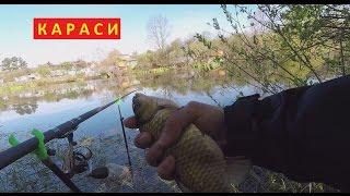 Караси, карасики, карасямбы - Народная рыбалка на карася