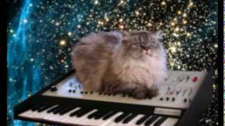 Bass Kleph - Keyboard Cat (Original Mix).mp3.mpg