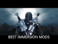 Skyrim Top 10 Best IMMERSION Mods PC XBOX mp3