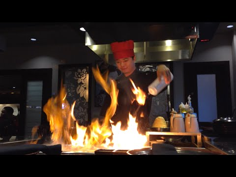 Professional Hibachi Grill Chef Preparing Delicious Meal 2015 Part 2