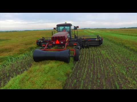 Harvest 2016 - Dairy Farming in Canada