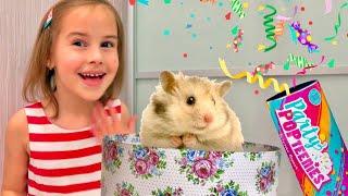 Пропали ИГРУШКИ из волшебной коробки Необычный КВЕСТ для детей Pretend play with toys