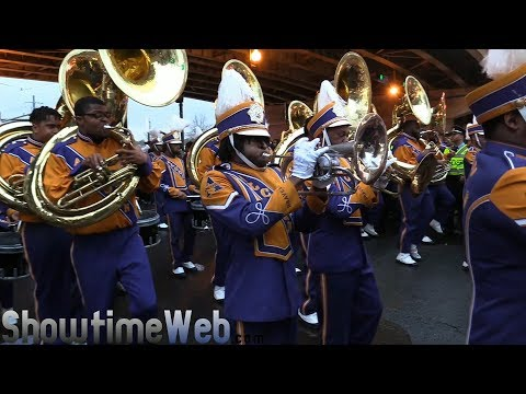 Endymion Bands