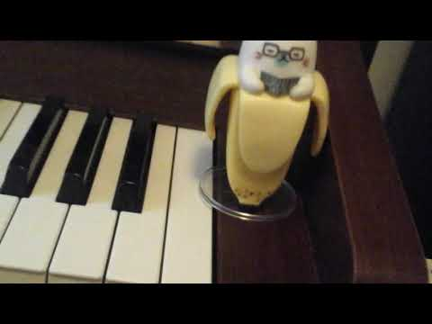 Banana cat show case