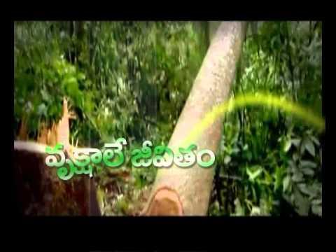 nature essay in telugu