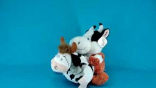 прикол - ол бык корову