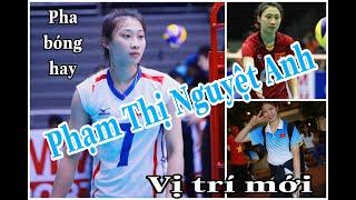Gambar cover Highlighs Phạm Thị Nguyệt Anh - Vị Trí Mới - Tập 18