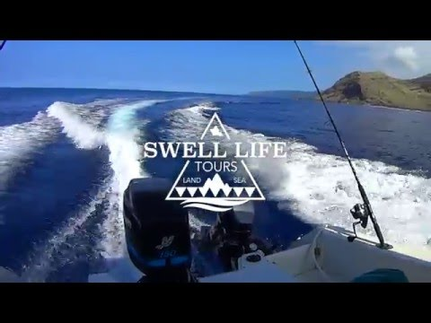 Private Boat Charter in Oahu's Waianae Coast | Swell Life Tours
