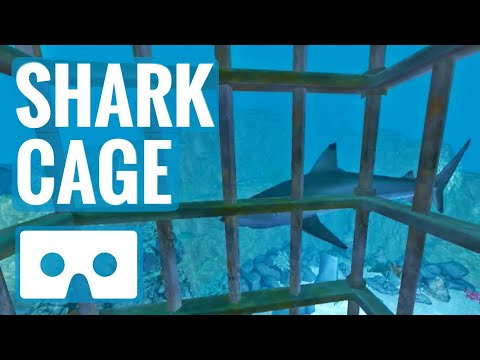 Shark Cage Underwater SBS VR Box Virtual Reality sharks not 360°