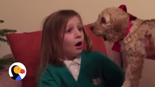 Little Girl Reacts to Puppy Surprise | The Dodo