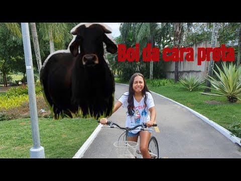 BOI DA CARA PRETA ( EP 23)