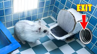 🐹Hamster escapes toilet maze for Pets in real life - Prison Break in Hamster 1001