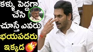 CM YS Jagan Fires On Chandrababu Naidu Over His Serious Look | AP Budget Session